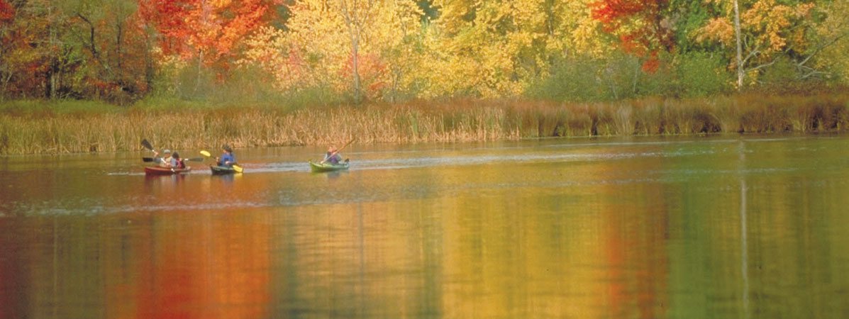 Kayaks in the fall